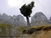 Pireneos de Aragon